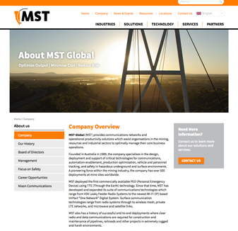 MST Global - WordPress Web Design by Hoppoing Mad Designs