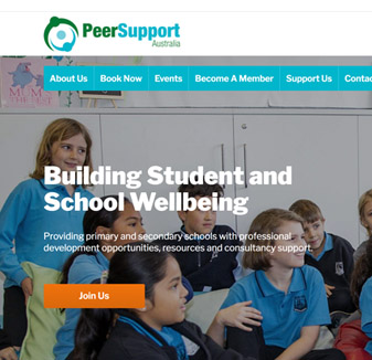 Web design - peer support